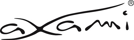 Logo Axami